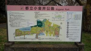 Kimg1051